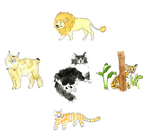 cats_collage.jpg