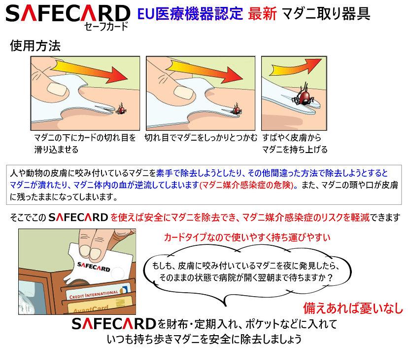 SAFECARD Amazon02-B.jpg