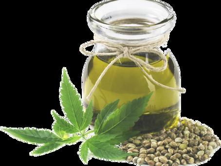 什麼是大麻籽油