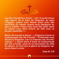 Sainte Elisabeth de la Trinité B2.jpg
