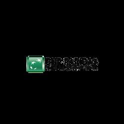 法國巴黎銀行 BNPP group logo