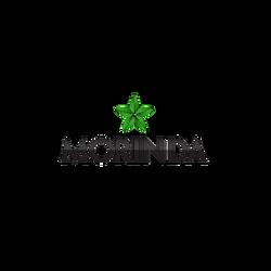 2005-大溪地諾麗果汁-美商慕立達國際Morinda_Logo