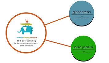 STN infographic_edited.jpg