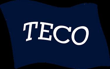 TECOLOGO197KB.png