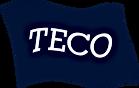TECOLOGO92KB.png