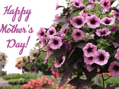 Celebrating Moms!