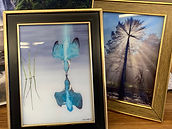 Pictures on Glass