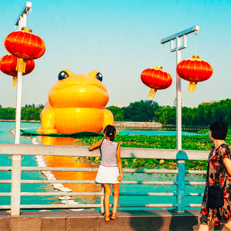 CHINA - BEIJING - YUYUANTAN PARK 085x 7_2014.jpg