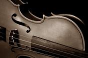 Myrta Bauer, Violinistin und Pianistin
