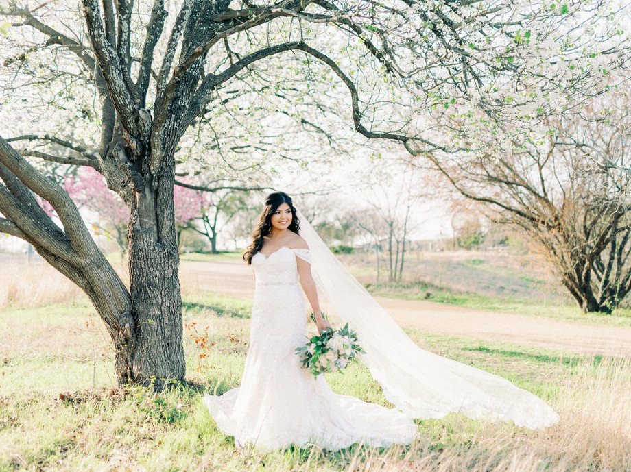 nancy-bridals-_25.JPG