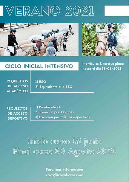 TDH-Intensivos-verano-CICLO-INICIAL.jpg