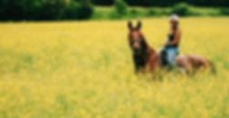 María Igulador y Red Diamond en los alrededores de CAVA Horse