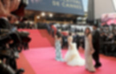 Cannes Film Festival private access and packages