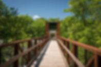 Crystal_Bridges_Tower_0043-1340x890.jpg