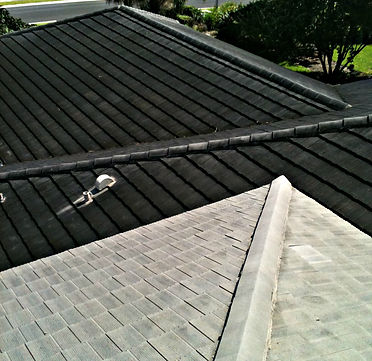 roof cleaning palm beach