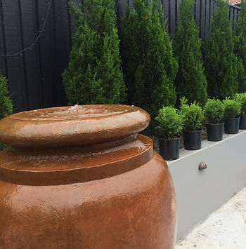 Branching out landscaping, northern beaches, sydney, water feature, pool coping, pools,