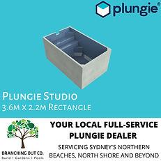 PLUNGIE AD STUDIO.jpg