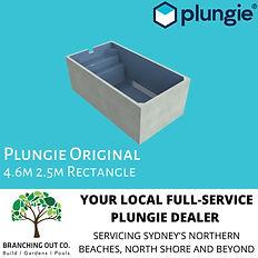 PLUNGIE AD ORIGINAL.jpg