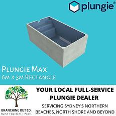 PLUNGIE AD MAX.jpg