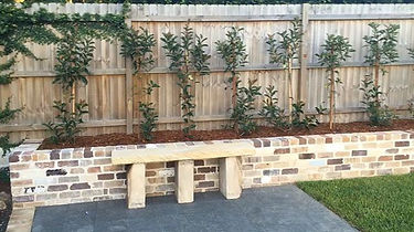 Branching out landscaping, northern beaches, Sydney, Paving, pavers, pebbles
