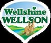 Wellshine Wellson footer logo