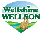 Wellshine Wellson footer logo