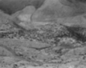 Mount St. Helens 44_019.jpg