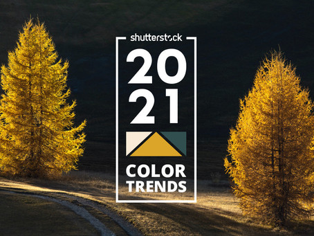 Shutterstock's color trends report: Rich colors to dominate 2021