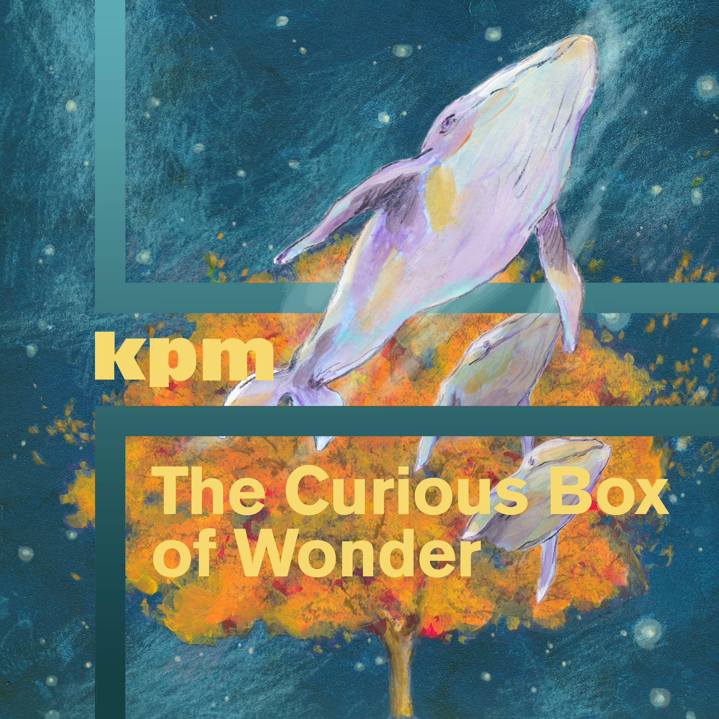 The Curious Box of Wonder