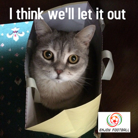 It's time to let the cat out of the bag.