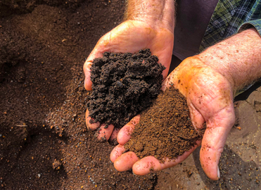 Healthy soil, why it matters. part 1