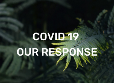 REFOREST NOW COVID-19 RESPONSE