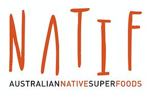 Logo - NATIF.png