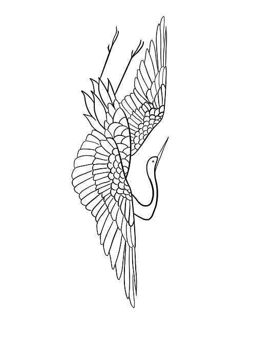 Neck Bird