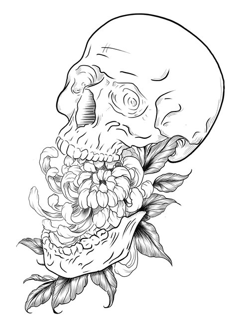 Skull Eating Chrysanthemum
