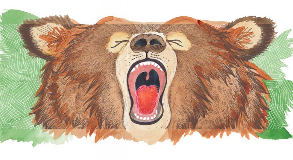 A3-grizzly-bear-abby-hobbs.jpg