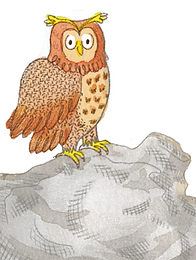 Owl 392x519.png