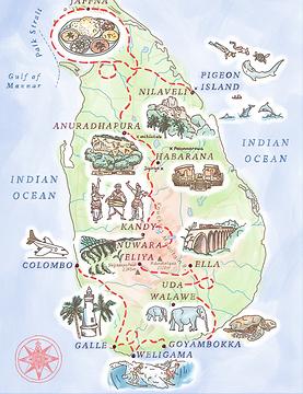 _Sri lanka 558x724.png