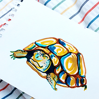 _turtle 392x392.png