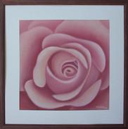 Pieseň o ruži 4 48x48cm