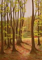 V lese 1 35x49cm