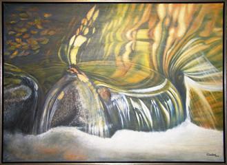 Impresie vody Vážka 103x75cm