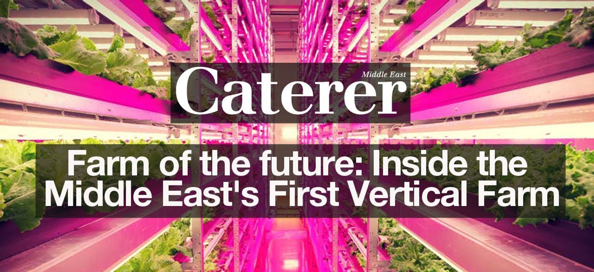 The Future of Farming in the Middle East
