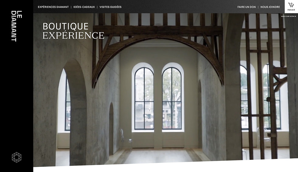 Website showing thumbnail for Lie Demmant. Image shows horizontal menu at the top and a photograph of the interior of a building facing towards arched windows covers the homepage.