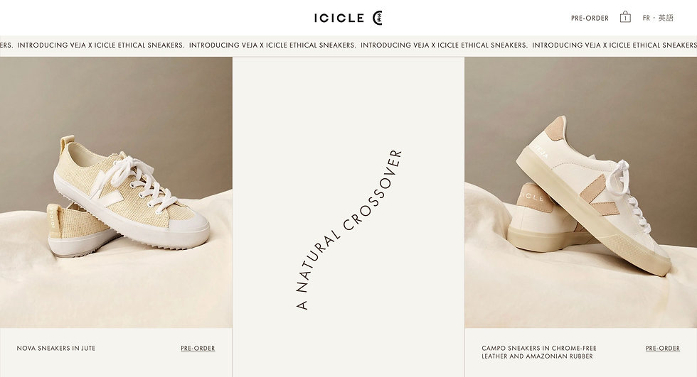 website thumbnail for Veja X Icicle. The logo is at the top of the image in the middle, on the left is a short horizontal menu bar. Beneath that is a small horizontal banner. The main section of the image is in 3 parts, on the left and right are images of the sneakers with information beneath them. in the middle is text written on its side.