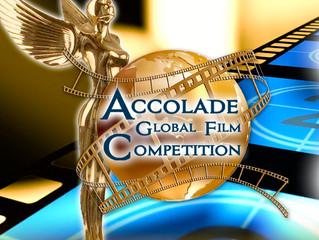 جایزه نگاه ویژه مسابقه بزرگ ستایش