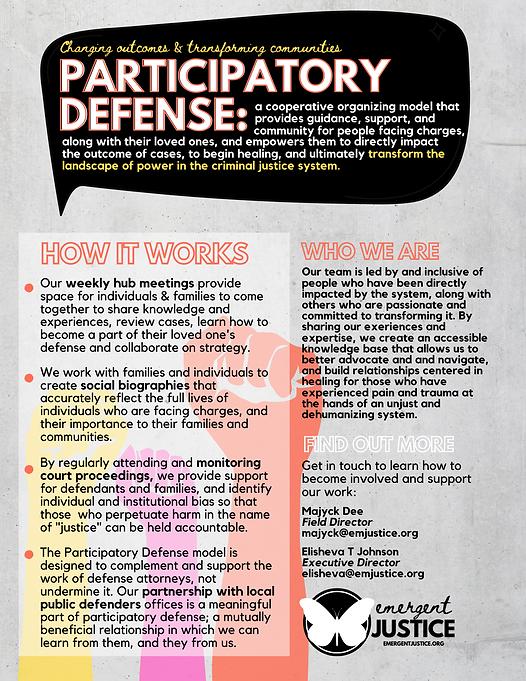 PARTICIPATORY DEFENSE.png