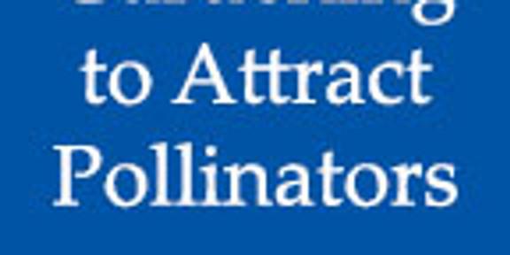 Gardening to Attract Pollinators