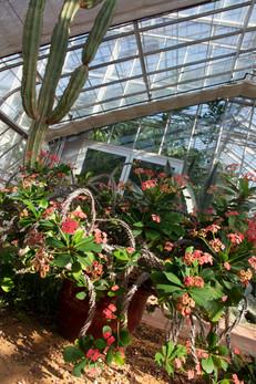 2018 10 06 Botanical Gardens Birmingham