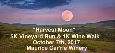Harvest Moon Run Warm Banner.png